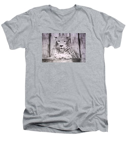 Men's V-Neck T-Shirt featuring the photograph White Snow Leopard Chillin by Belinda Lee