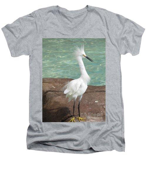 Snowy Egret Men's V-Neck T-Shirt by DejaVu Designs