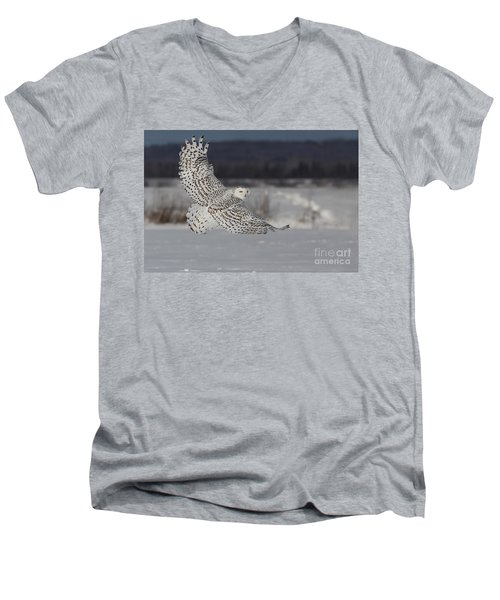 Snowy Owl In Flight Men's V-Neck T-Shirt