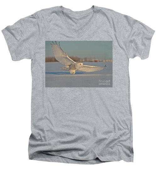 Snowy Owl Pictures 7 Men's V-Neck T-Shirt