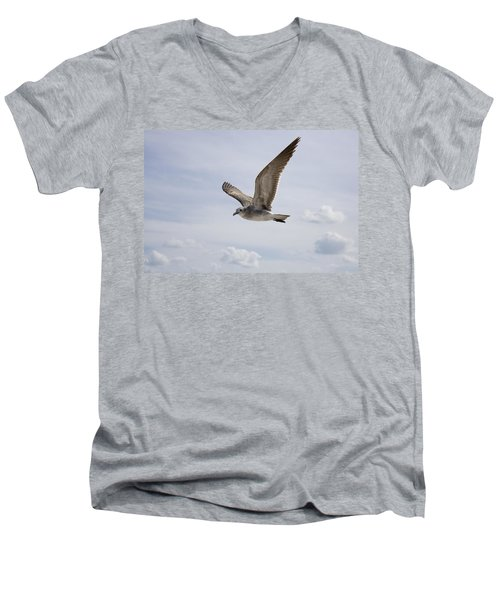 Soaring Gull Men's V-Neck T-Shirt
