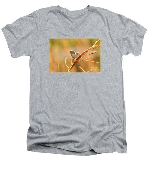 Soft Baby Blue Men's V-Neck T-Shirt by Debbie Green