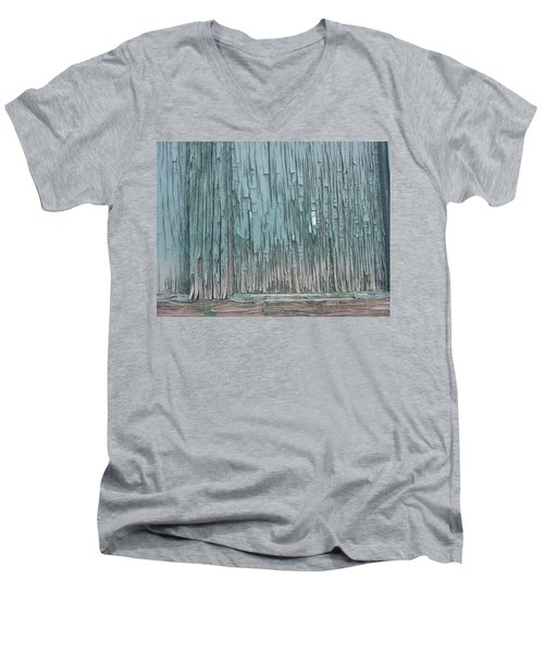 Soft Wood Men's V-Neck T-Shirt