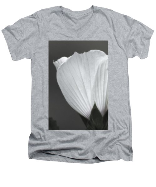 Softly Now Men's V-Neck T-Shirt