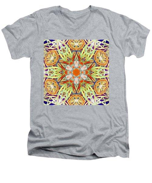 Solar Lattice Men's V-Neck T-Shirt
