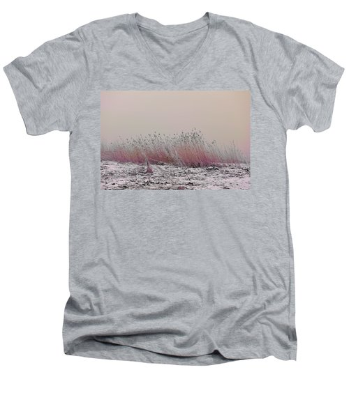 Soothing View Men's V-Neck T-Shirt