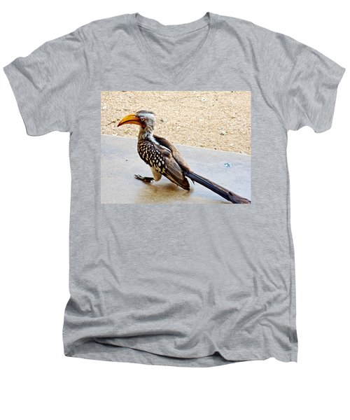 Southern Yellow-billed Hornbill In Kruger National Park-south Africa Men's V-Neck T-Shirt by Ruth Hager