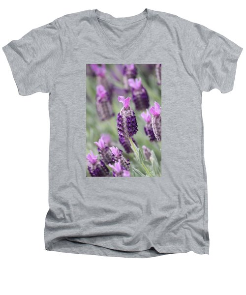Men's V-Neck T-Shirt featuring the photograph Spanish Breeze by Amy Gallagher