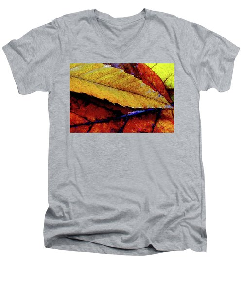 Spearpoint Men's V-Neck T-Shirt by Chuck Mountain