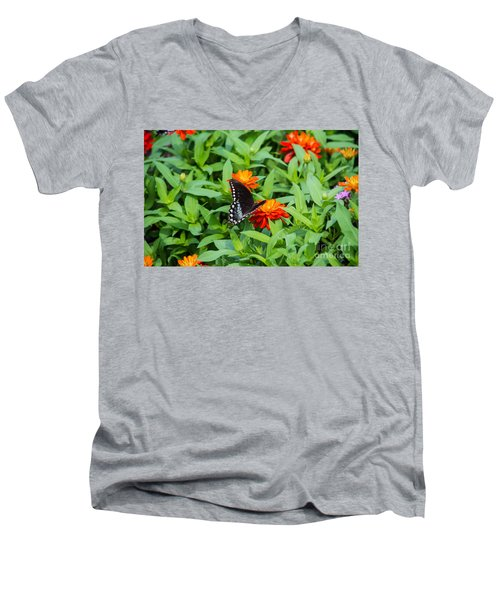 Spicebush Swallowtail Men's V-Neck T-Shirt