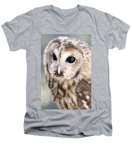 Men's V-Neck T-Shirt featuring the photograph Spotted Owl by Shoal Hollingsworth