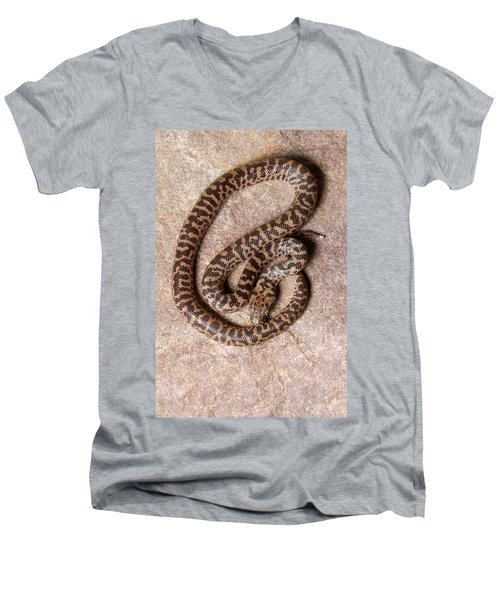 Spotted Python Antaresia Maculosa Top Men's V-Neck T-Shirt
