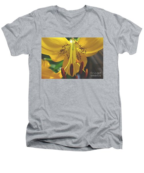Men's V-Neck T-Shirt featuring the photograph Spread Your Wings by John S