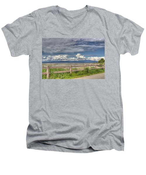 Spring Afternoon Men's V-Neck T-Shirt