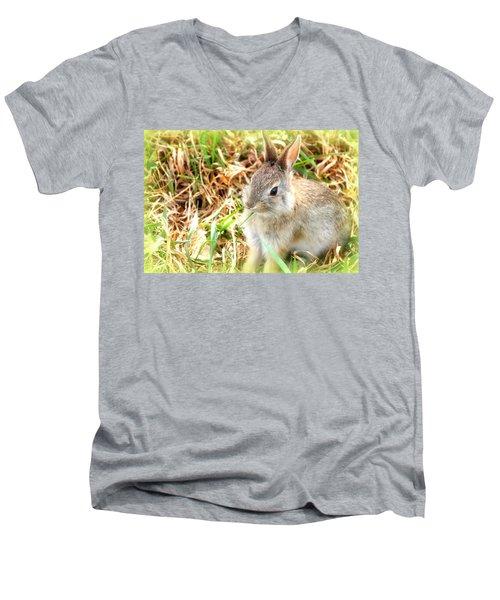Spring Bunny Men's V-Neck T-Shirt