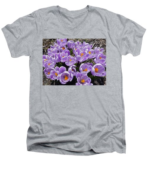 Spring Faces Men's V-Neck T-Shirt