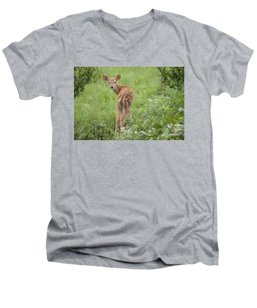 Spring Fawn Men's V-Neck T-Shirt by Jeannette Hunt