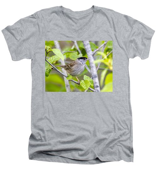 Spring Scene Men's V-Neck T-Shirt