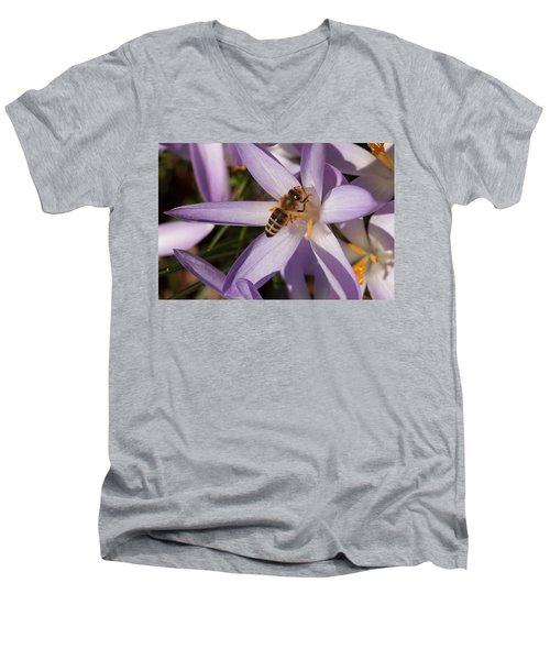 Spring's Welcome Men's V-Neck T-Shirt