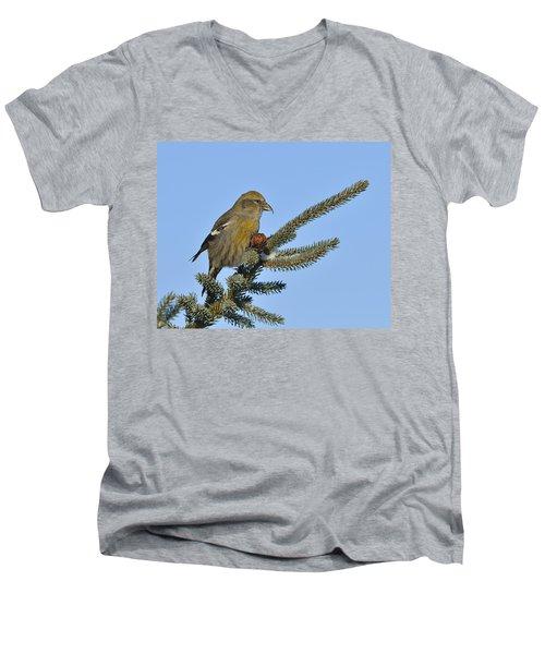 Spruce Cone Feeder Men's V-Neck T-Shirt by Tony Beck