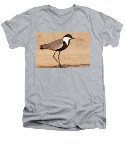 Spur-winged Lapwing Vanellus Spinosus Men's V-Neck T-Shirt by Eyal Bartov