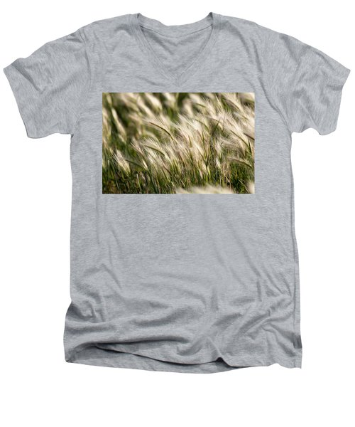 Men's V-Neck T-Shirt featuring the photograph Squirrel Grass by Fran Riley