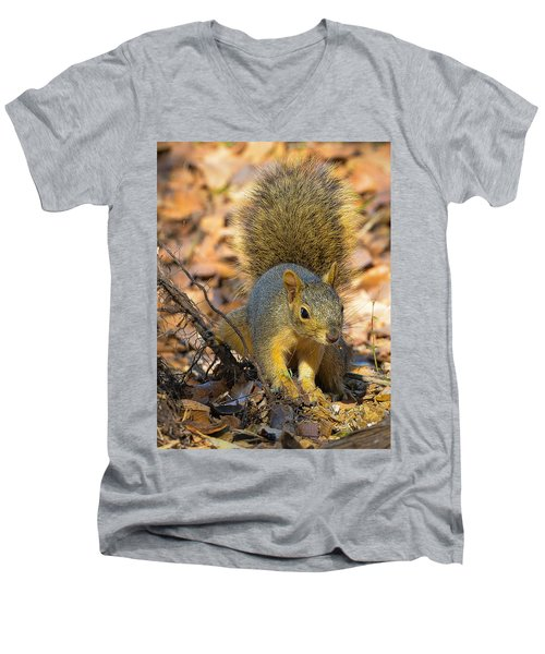 Squirrel Men's V-Neck T-Shirt