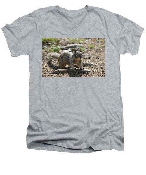 Squirrel Play  Men's V-Neck T-Shirt