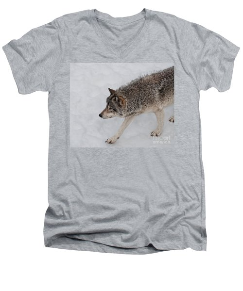 Men's V-Neck T-Shirt featuring the photograph Stalker by Bianca Nadeau