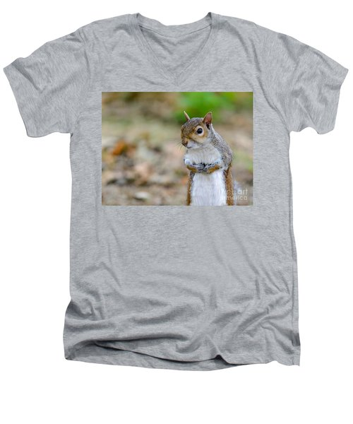 Standing Squirrel Men's V-Neck T-Shirt