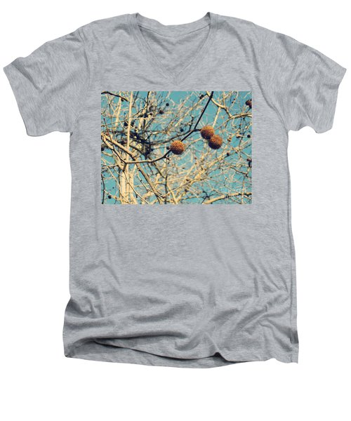 Sticks And Pods Men's V-Neck T-Shirt