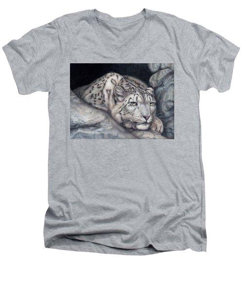 Stillnes Like A Stone Men's V-Neck T-Shirt by Pat Erickson