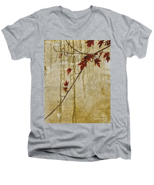 Stone Walled Men's V-Neck T-Shirt