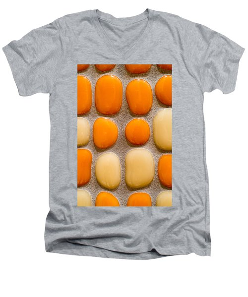 Stone Yolks Men's V-Neck T-Shirt