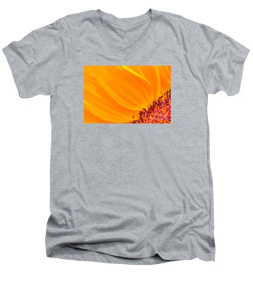 Stretching Out Men's V-Neck T-Shirt by Jim Carrell