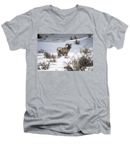 Striking A Pose Men's V-Neck T-Shirt