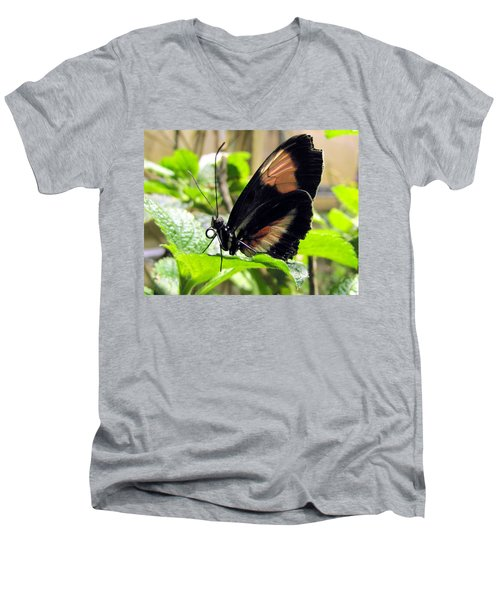 Striped Beauty Men's V-Neck T-Shirt