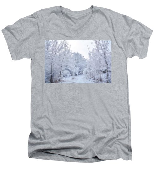 Stroll Through A Winter Wonderland Men's V-Neck T-Shirt
