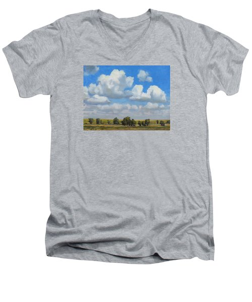Summer Pasture Men's V-Neck T-Shirt