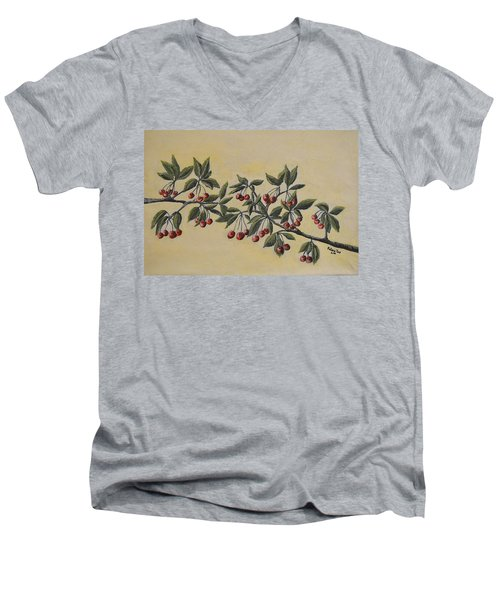 Summer Stay... Men's V-Neck T-Shirt