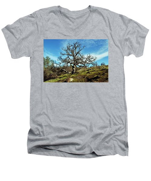 Summit Of Monkey Face Men's V-Neck T-Shirt