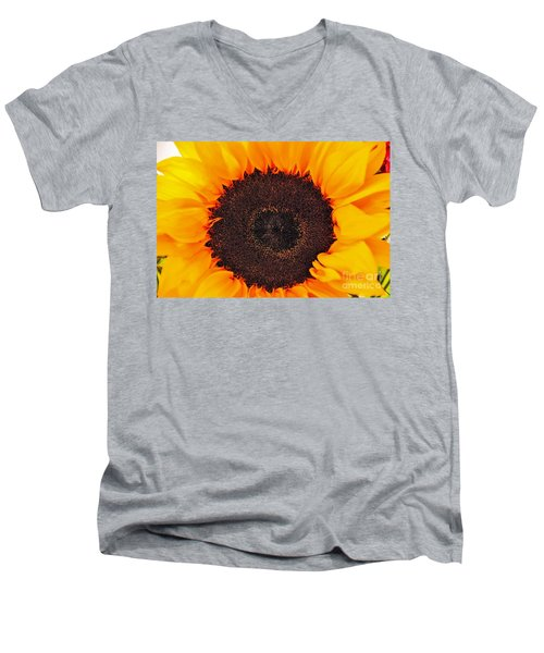 Sun Delight Men's V-Neck T-Shirt