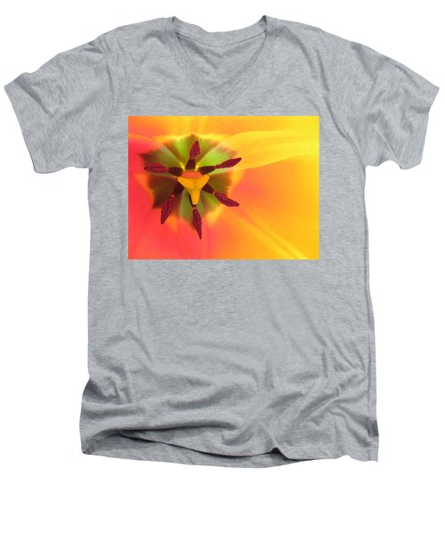 Sunburst 2 Men's V-Neck T-Shirt