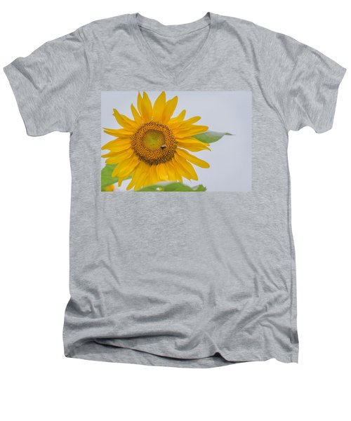 Sunflower And Bee Men's V-Neck T-Shirt