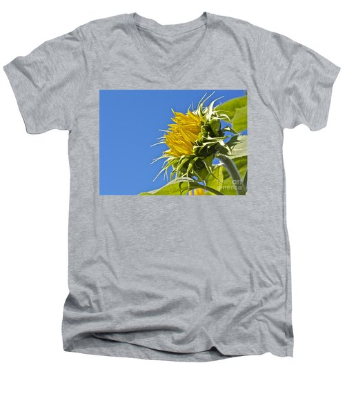 Men's V-Neck T-Shirt featuring the photograph Sunflower by Linda Bianic