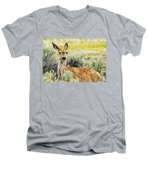 Men's V-Neck T-Shirt featuring the photograph Surround Sound by Belinda Greb