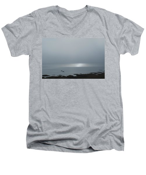 Swans At Sunrise Men's V-Neck T-Shirt