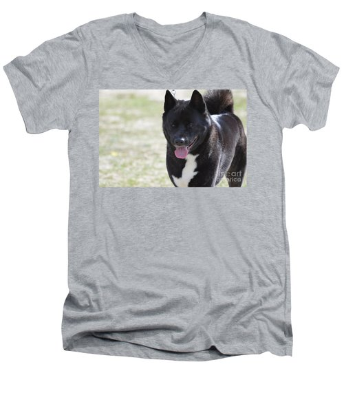 Sweet Akita Dog Men's V-Neck T-Shirt