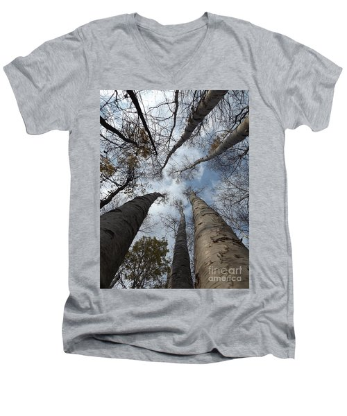 Tall Birch Circle Men's V-Neck T-Shirt