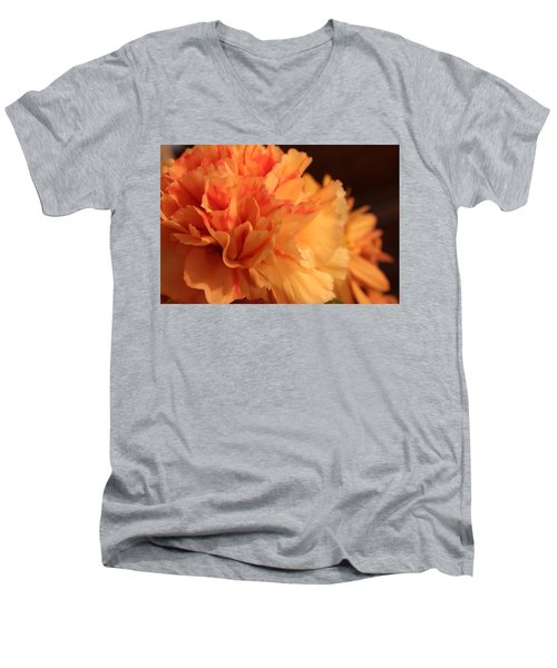 Tangerine Dreams Men's V-Neck T-Shirt